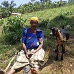 Camilla-goat-rearing-evergreenafrica